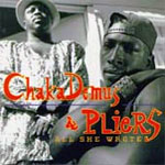 Chaka Demus & Pliers - All She Wrote